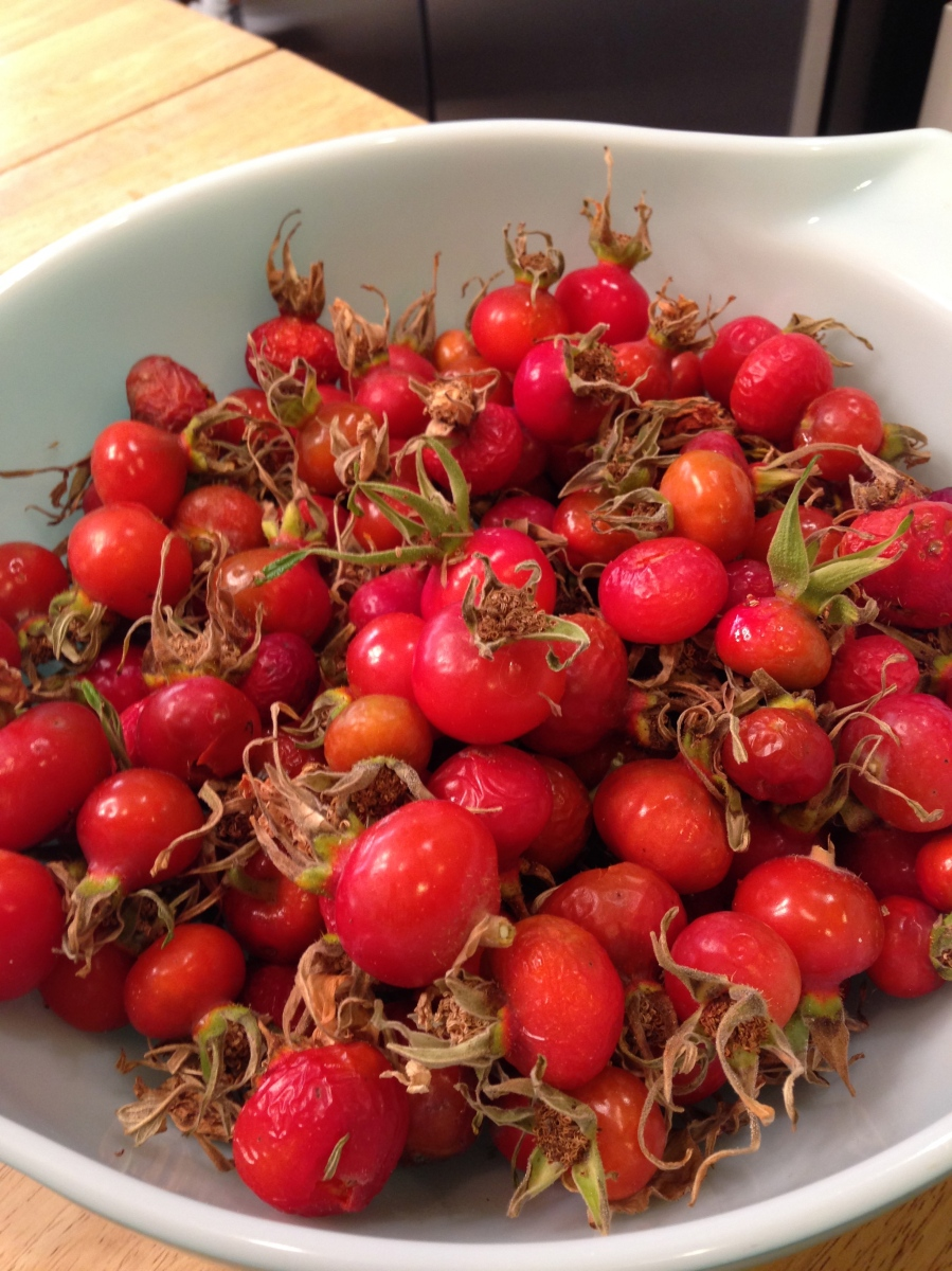 4 learn how to make rosehip jelly check couponbomb - What to do with rosehips jelly and vinegar ...