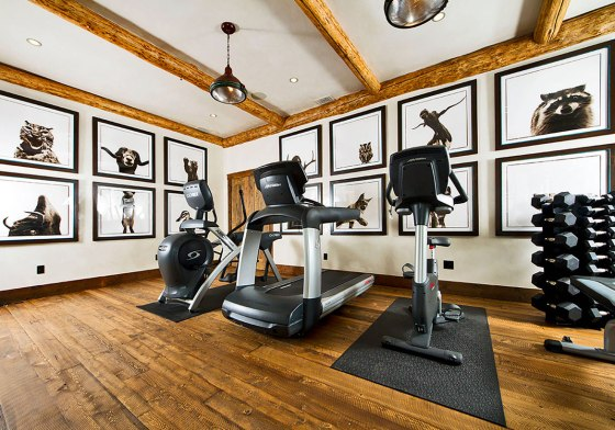 Extraordinary-Home-Gym-Design-Ideas-63_Sebring-Design-Build.jpg