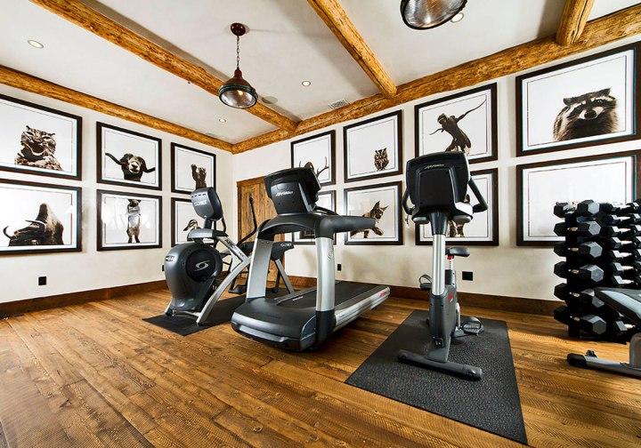 Extraordinary-Home-Gym-Design-Ideas-63_Sebring-Design-Build.jpg